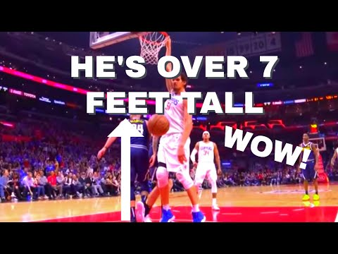 Why are nba players so tall?