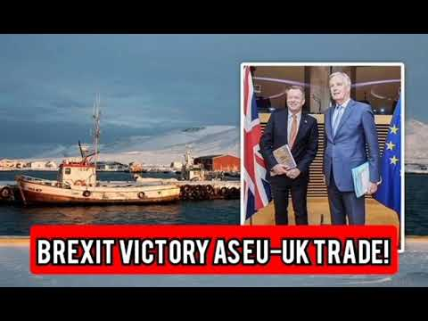 Brexit victory as eu-uk trade talks 'showed iceland why it should never join'