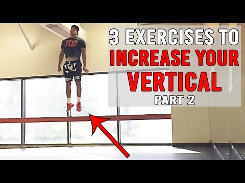 3 exercises to increase your vertical pt.2 | jump higher | the lost breed