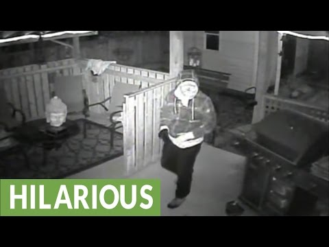 Security cam captures approaching thief getting shot with paintball gun