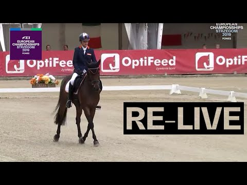 Re-live   eventing (dressage pt 2)   fei european championships for ponies 2019