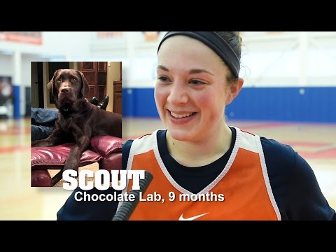 Syracuse women's basketball on why they love, miss their dogs