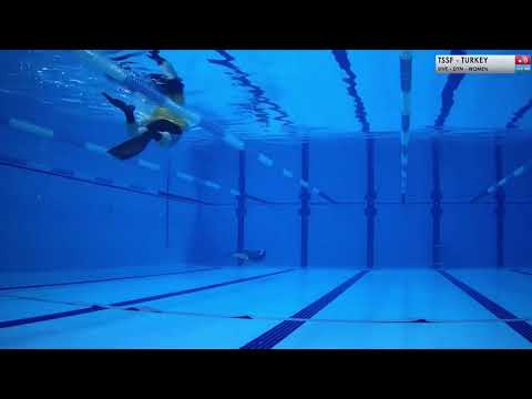 2019 cmas freediving indoor european championship dyn world record by alessia zecchini 253mt