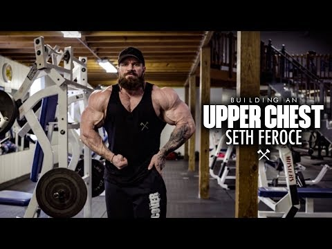 Building an upper chest with seth feroce